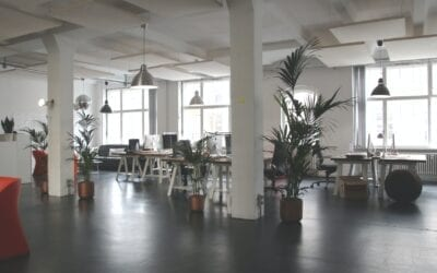 Optimise your office layout